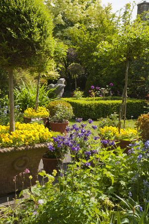 Small densely planted summer garden with shrubs and colour Stock Photo