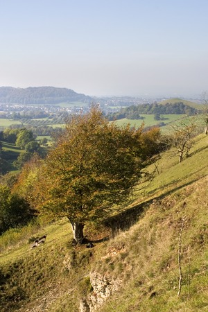 England, Cotswolds, Gloucestershire, Uley Bury, autumn colour view from hilltop Stock Photo