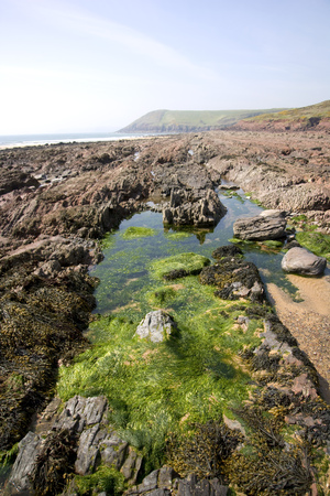 UK, Wales, Pembrokeshire, Manorbier, rockpools on the beach Stock Photo