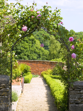 Garden gate arch with climbing roses leading to a sunlit walled garden Stock Photo