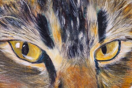 Details of acrylic paintings showing colour, textures and techniques. A cats eyes close up.