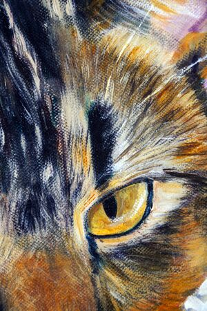 Details of acrylic paintings showing colour, textures and techniques. A cats eye close up.