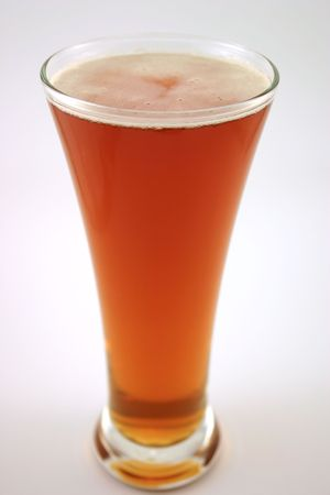 pilsner glass: Beer in a pilsner glass isolated on an off-white background