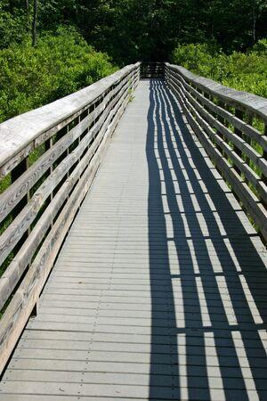 boardwalk trail: A boardwalk hiking trail through the woods Stock Photo