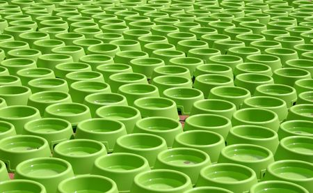 A sea of dog bowls set up for a charity event