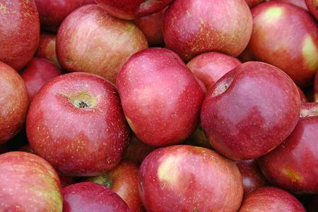 A large group of beautiful red apples Stock Photo - 3719430