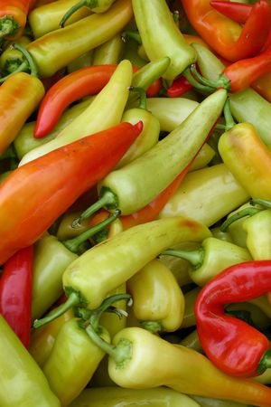 A large colorful group of chili peppers Stock Photo - 3719419