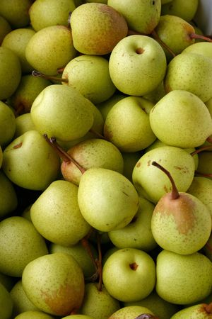 A large group of beautiful green pears Stock Photo - 3719426
