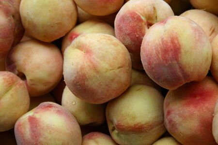 A large group of beautiful ripe peaches Stock Photo - 3719423