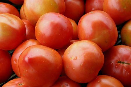 A large group of beautiful red tomatoes Stock Photo - 3719433