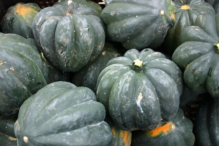 A large bunch of ripe Acorn squash Stock Photo