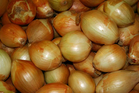 A large group of fresh yellow onions Stock Photo - 12920592