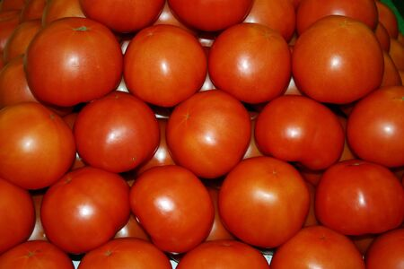 A large group of beautiful red tomatoes Stock Photo - 12920594