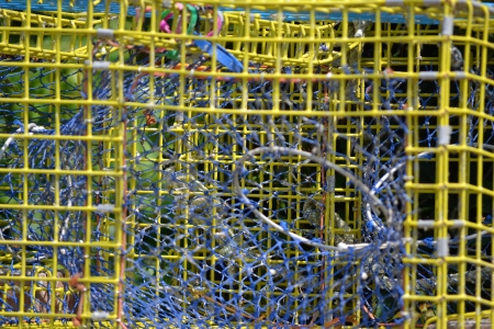 Close up of the grating of a metal lobster trap photo