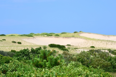 The dunes of Cape Cape, Massachusetts with a blue sky background photo