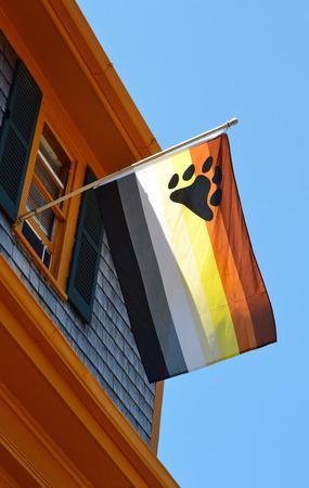 A gay bear flag against a blue sky background