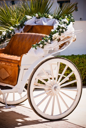 horse carriage: Wedding Carriage