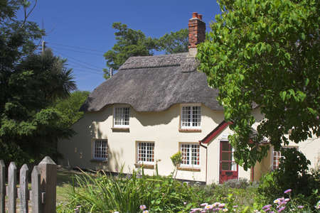 thatched cottage: cream thatched cottage set in beautiful garden with deep blue sky.