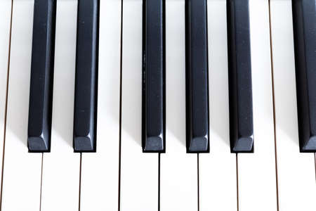 piano or organ keyboard showing white and black notes