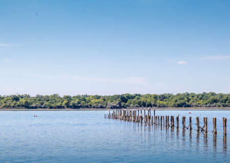 a line of wooden posts in the salt lake near Braila Romania