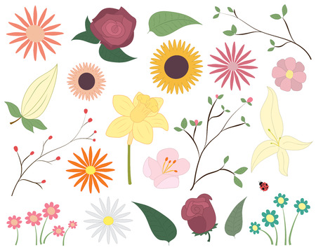 Set of colorful vector flowers. Floral elements including flowers, leaves, blossom and a ladybird.