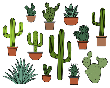 Cactus set, hand drawn collection of various succulents and cacti desert plants
