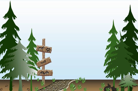 The trail in the forest Vector