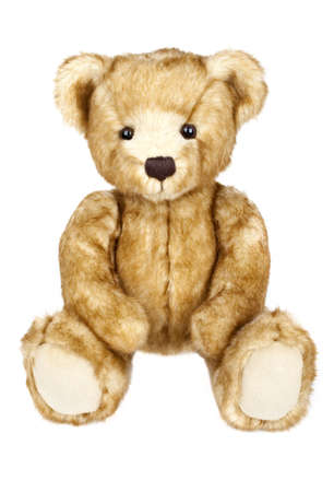 plush toy: A traditional Teddy Bear on a white background.