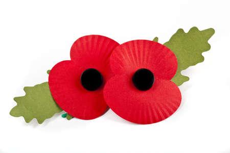 Amapolas para conmemorar las muertes de guerra de la Commonwealth en las dos guerras mundiales Foto de archivo