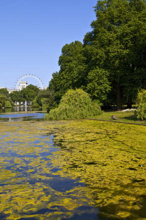 st james s: The beautiful view from St  James s Park in London Editorial