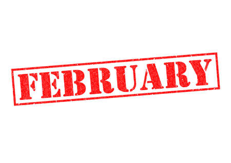 FEBRUARY Rubber Stamp over a white background. photo