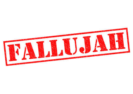 FALLUJAH red Rubber Stamp over a white background. photo