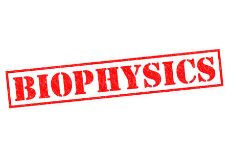 biophysics: BIOPHYSICS red Rubber Stamp over a white background. Stock Photo