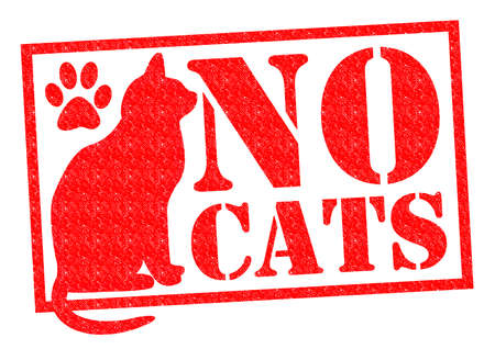 NO CATS red Rubber StampSign over a white background. photo