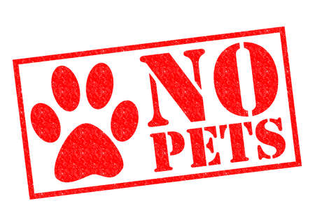 NO PETS red Rubber Stamp over a white background.