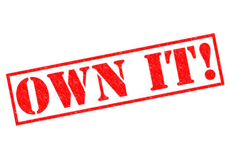 OWN IT! red Rubber Stamp over a white background.