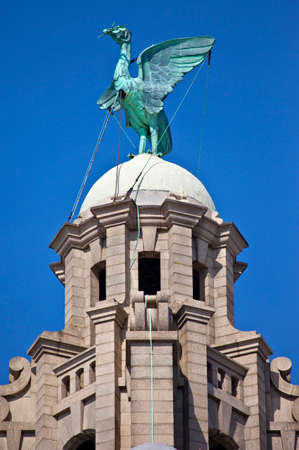 clocktower: A Liver Bird statue perched ontop of the Royal Liver Building in Liverpool. Stock Photo