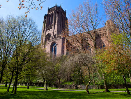 A view of Liverpool Anglican Cathedral through the trees of St James Cemetery. photo