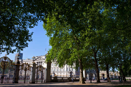 prince charles of england: A view of the magnificent Buckingham Palace through the trees of Green Park in London.