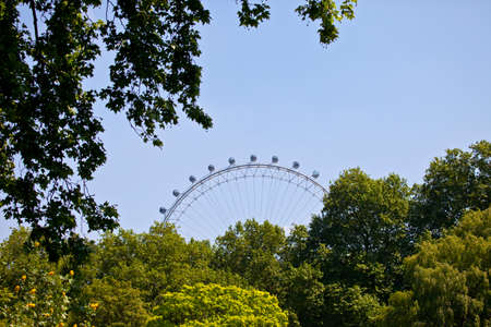 st jamess: LONDON, UK - MAY 18TH 2014: The London Eye viewed from St. Jamess Park in London on 18th May 2014.