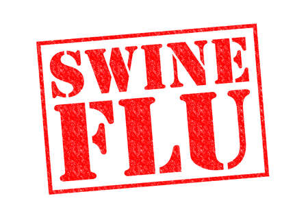 a disease carrier: SWINE FLU red Rubber Stamp over a white background.