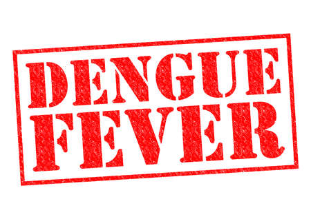 dengue fever: DENGUE FEVER red Rubber Stamp over a white background. Stock Photo