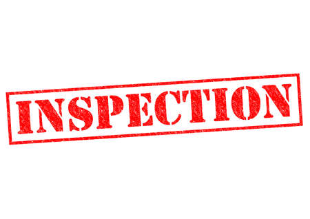 scrutinise: INSPECTION red Rubber Stamp over a white background. Stock Photo