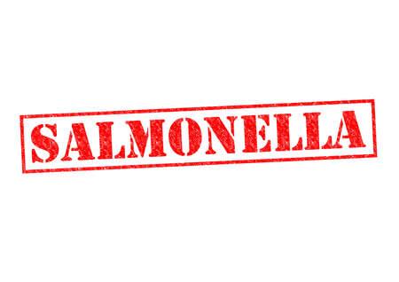 salmonella: SALMONELLA red Rubber Stamp over a white background.