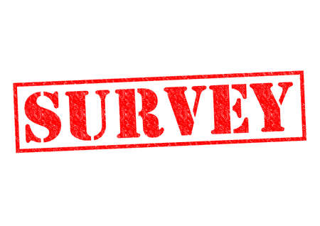 critique: SURVEY red Rubber Stamp over a white background. Stock Photo