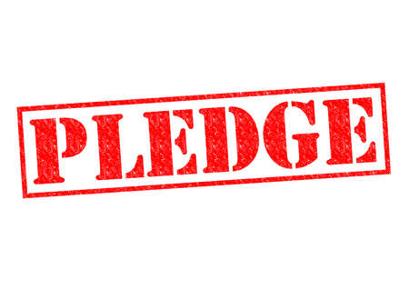 vow: PLEDGE red Rubber Stamp over a white background.