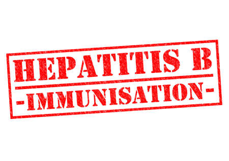 hepatitis vaccination: HEPATITIS B IMMUNISATION red Rubber Stamp over a white background.