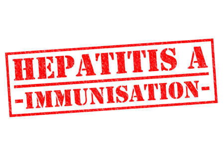hepatitis vaccination: HEPATITIS A IMMUNISATION red Rubber Stamp over a white background.
