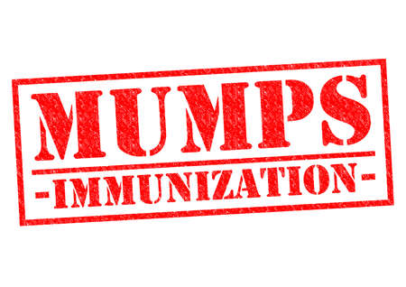 mumps: MUMPS IMMUNIZATION red Rubber Stamp over a white background. Stock Photo