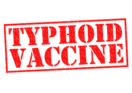 typhus: TYPHOID VACCINE red Rubber Stamp over a white background. Stock Photo